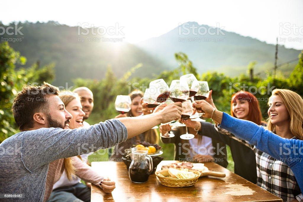 Amigos brindando com vinho tinto, depois da colheita - foto de acervo
