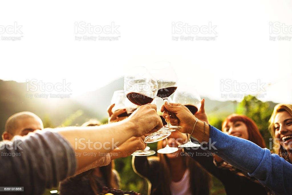 Amis portant un toast de vin rouge après la cueillette - Photo