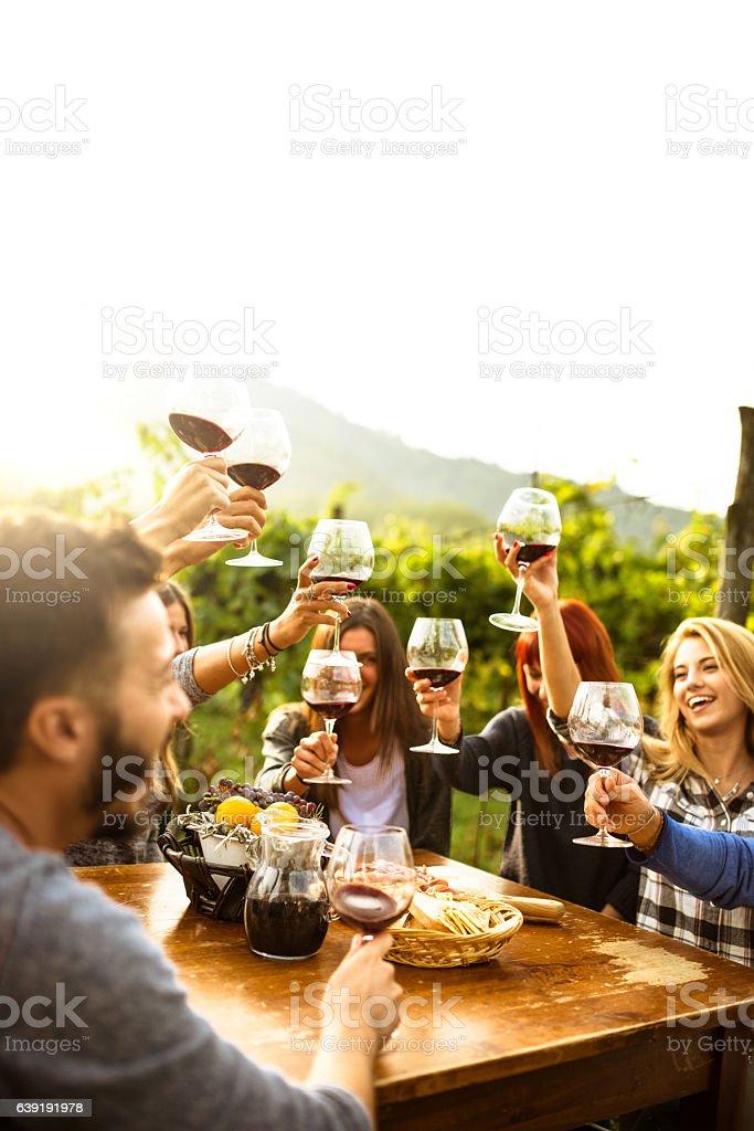 Amigos brindis con vino tinto después de la recolección - foto de stock