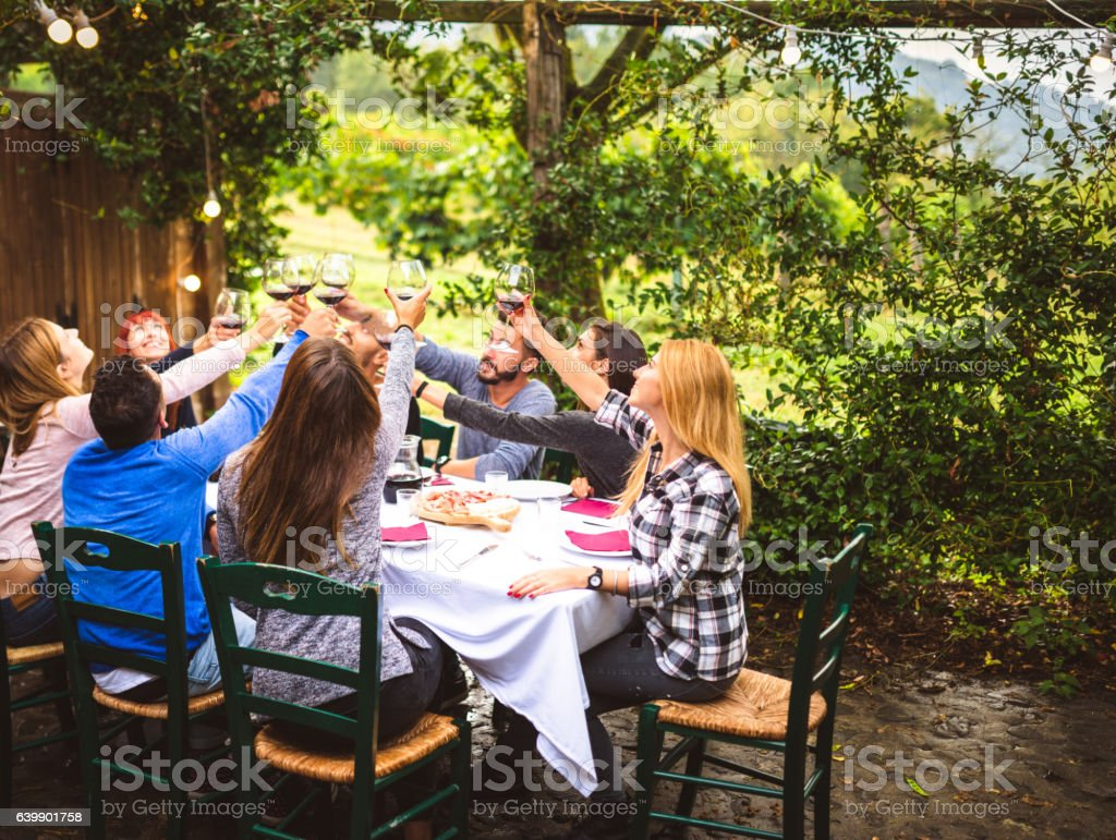 friends toasting with red wine on the lunch - Photo