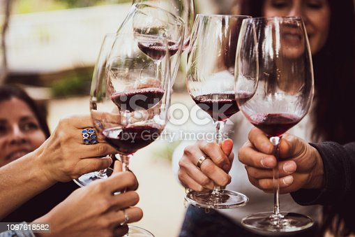 happy Friends Toasting with red Wine