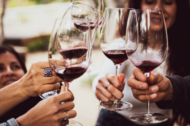 Friends Toasting with Wine happy Friends Toasting with red Wine winetasting stock pictures, royalty-free photos & images