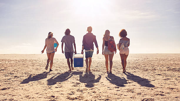 Friends walking on the beach carrying a cooler box Rear view portrait of group of friends walking on the beach and helping each other while carrying a cooler box. Young people on sea shore on a summer day. cooler container stock pictures, royalty-free photos & images