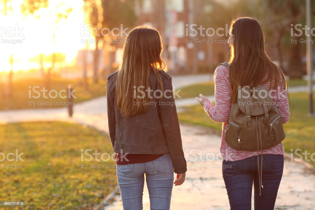 Friends walking together at sunset stock photo