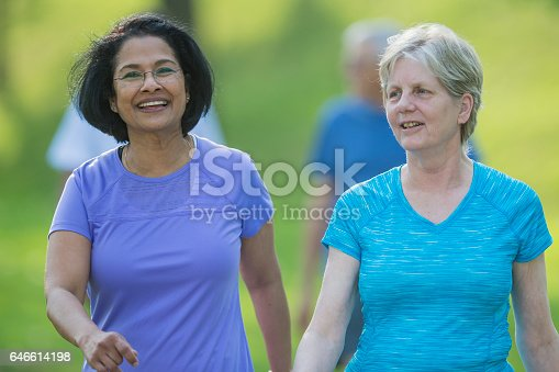 646614234 istock photo Friends Walking Together on a Sunny Day 646614198