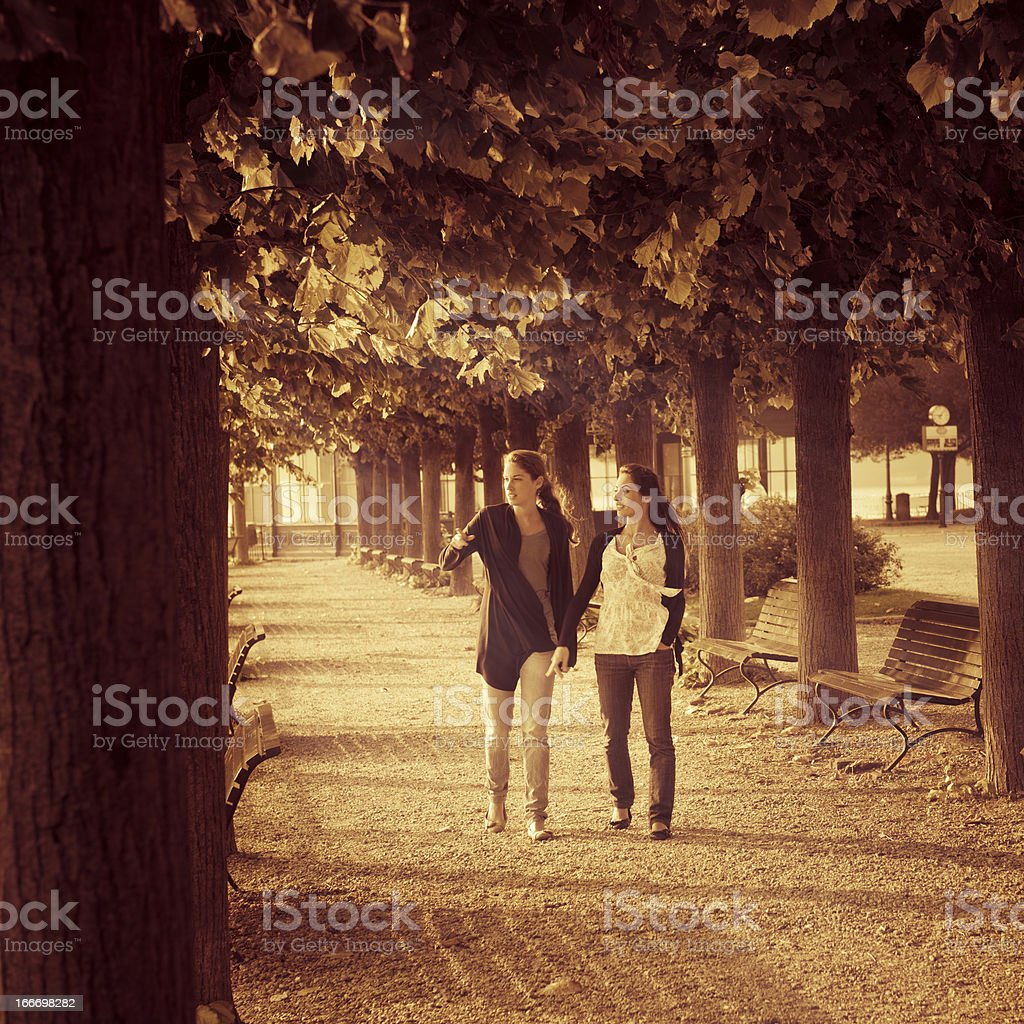 Friends woman couple walking in the park on autumn royalty-free stock photo