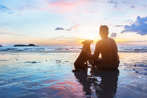 istock friendship concept, man and dog sitting together on the beach 638554322