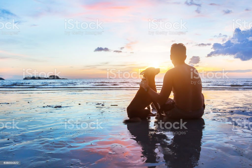 friendship concept, man and dog sitting together on the beach stock photo