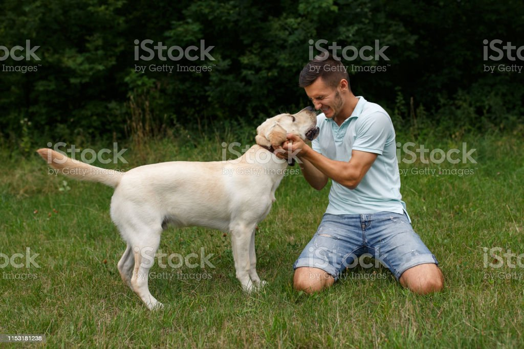 Friendship of man and dog. Happy young man is playing with his friend...