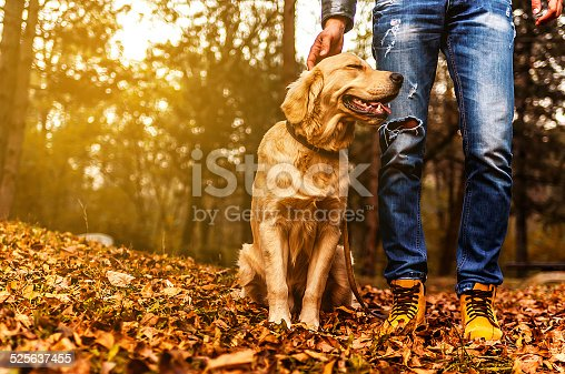 Man enjoying with his dog in a park in autumn day