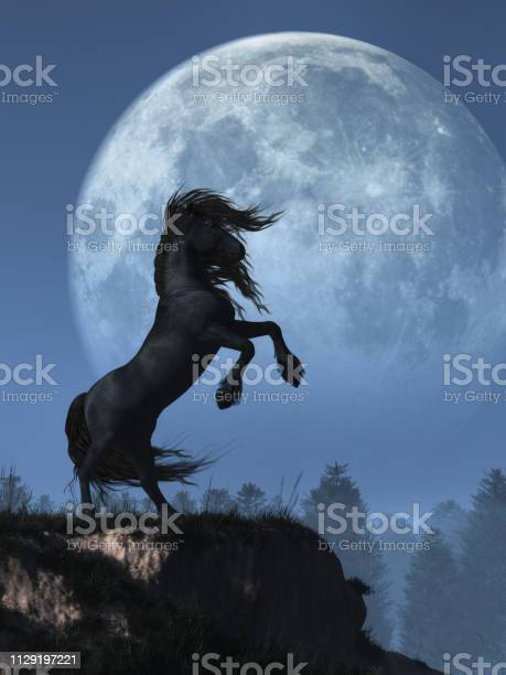 Photo of Friesian and Full Moon