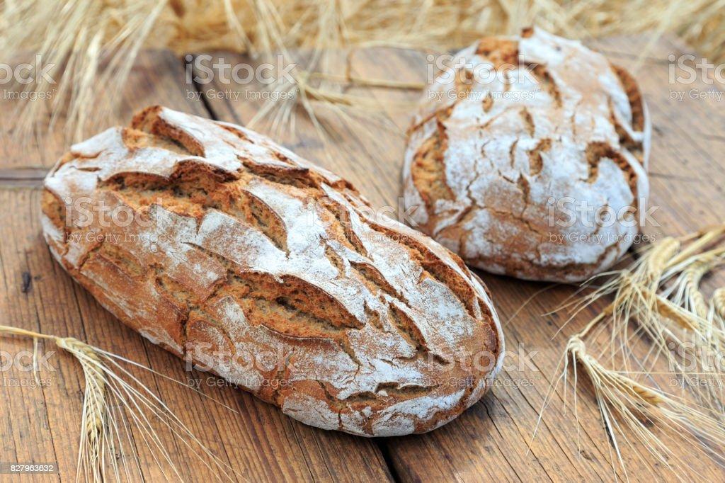 frisch gebackenes Brot frisch gebackenes Brot Biology Stock Photo