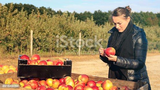 istock Frisch geerntete Äpfel werden gekauft 691649094