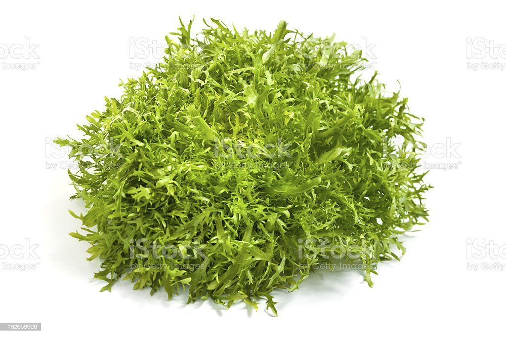 Frisee chicory endive salad on white royalty-free stock photo