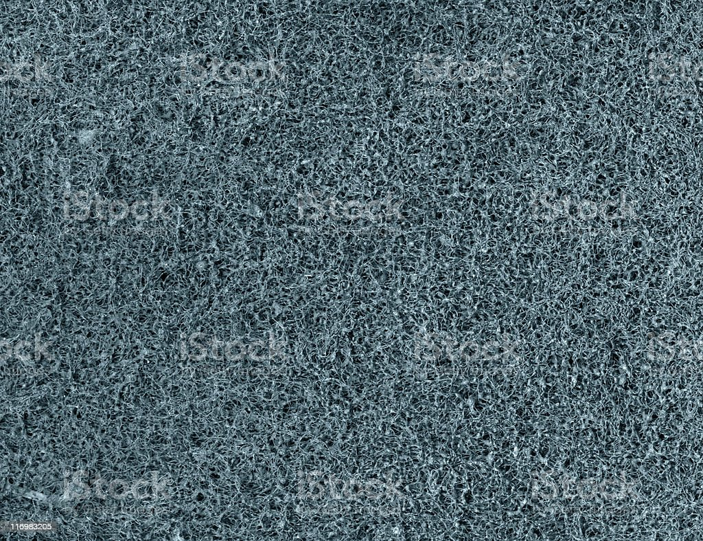 frizzly blue background royalty-free stock photo