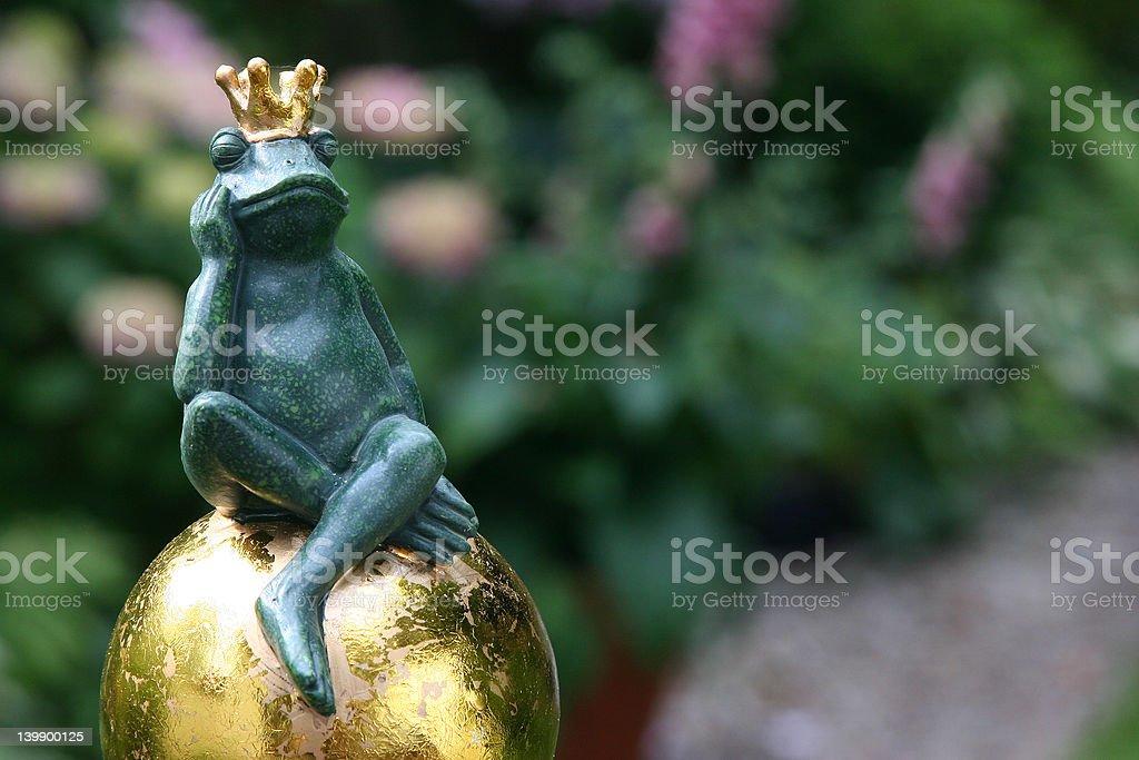 Frog King 5_1 stock photo