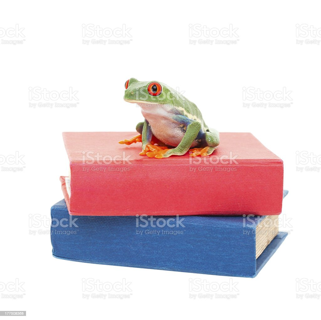 Frog on Science Books stock photo