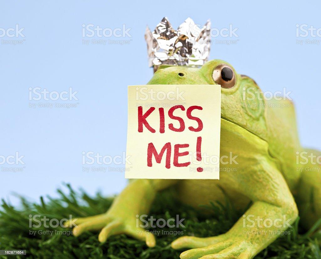 Frog Prince Charming royalty-free stock photo