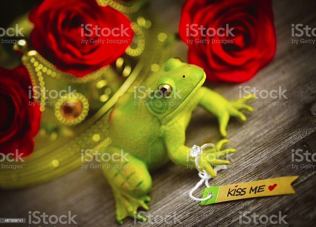 Frog Prince Charming with Engagement Ring stock photo