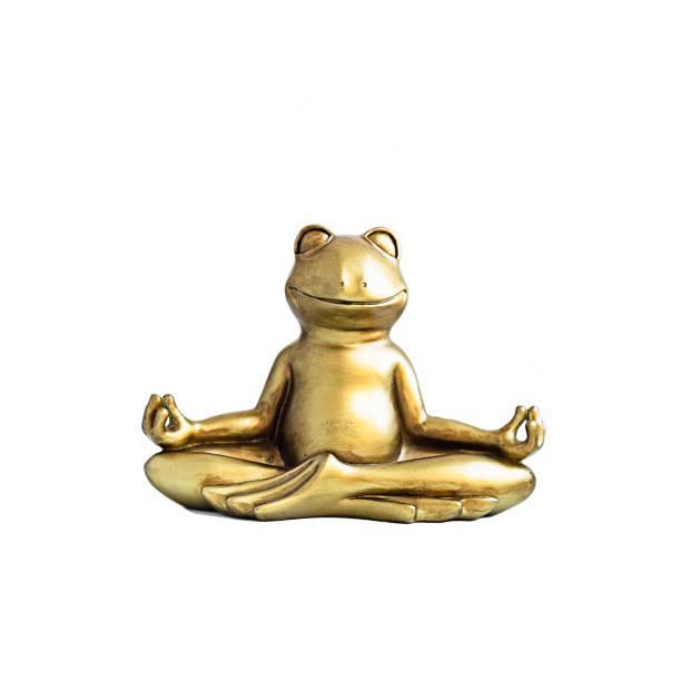 Frog sitting in lotus pose Smiling gold yoga frog meditating in lotus pose. Body, mind and soul balance concept. Isolated on white yogi stock pictures, royalty-free photos & images