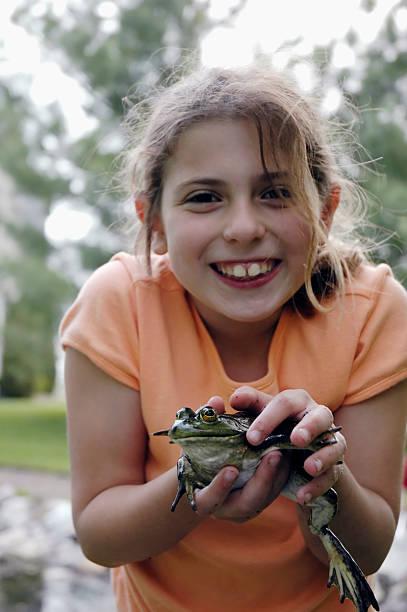 froggie stock photo