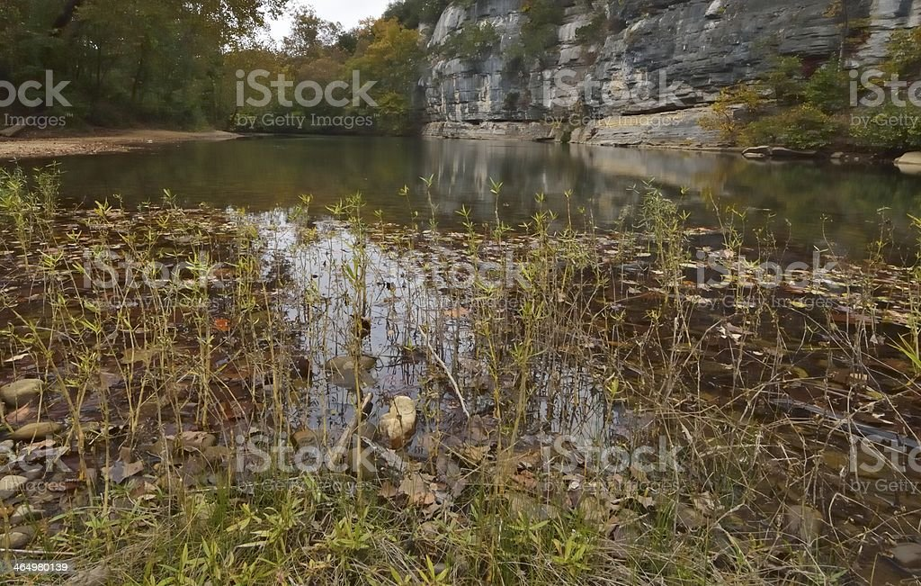 Frog's Eye View royalty-free stock photo