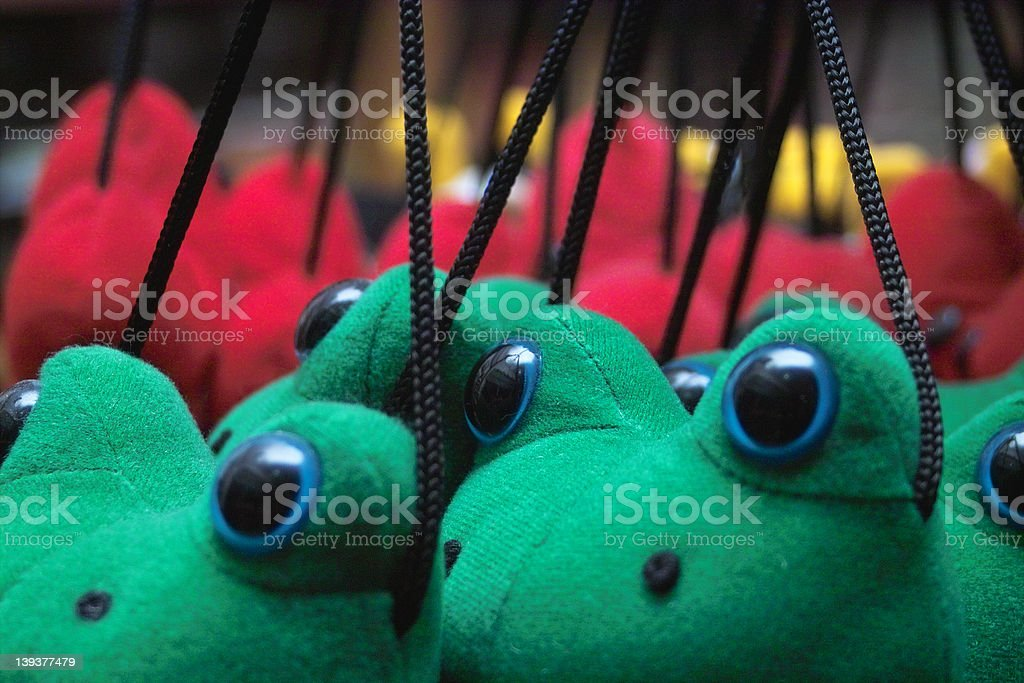 Frogs on strings royalty-free stock photo