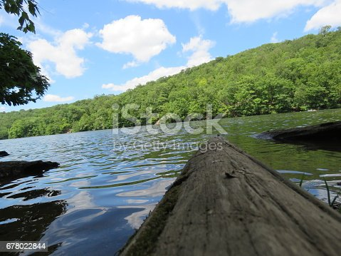 A log floating on the water looking out at the mountains, tree and clouds.