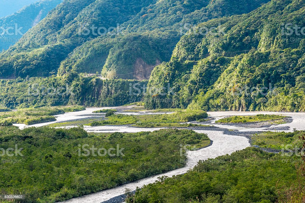 From Andes to Amazon, Tropical rainforest, Pastaza, Ecuador stock photo