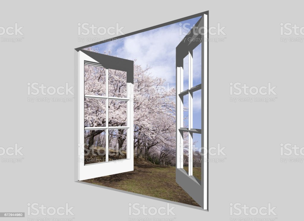 From cherry blossoms stock photo