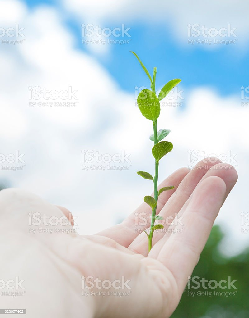 From empty hands stock photo