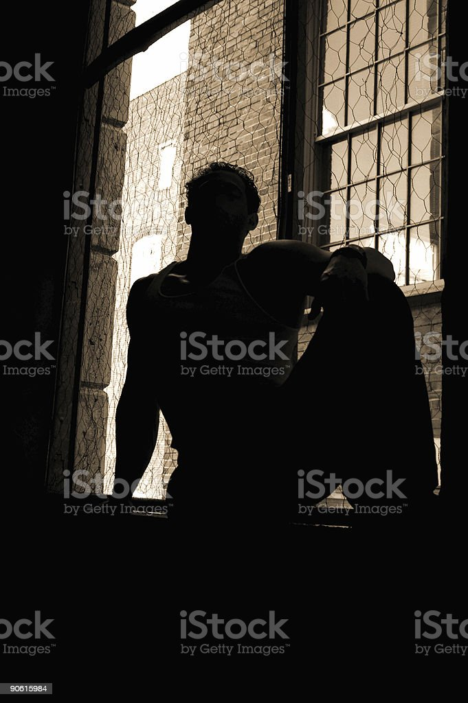 from out of the shadows royalty-free stock photo