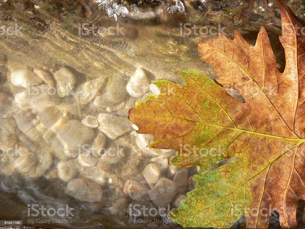 From Pure Fountain stock photo
