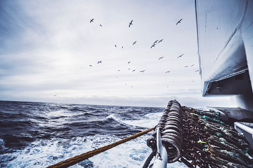 From the bridge of a fishing boat in a stormy sea