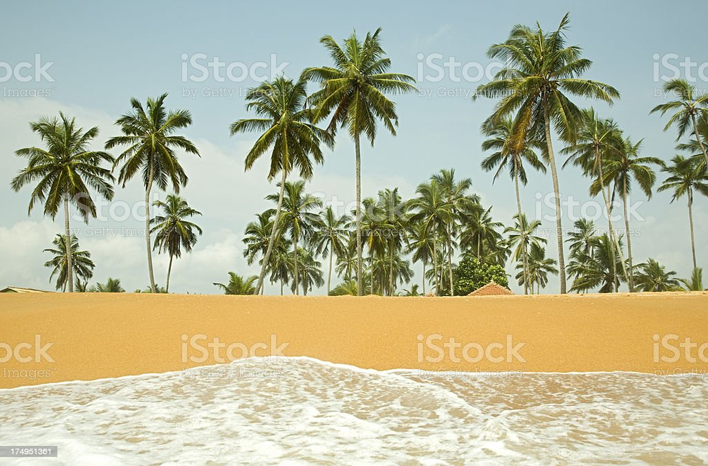 from the sea royalty-free stock photo