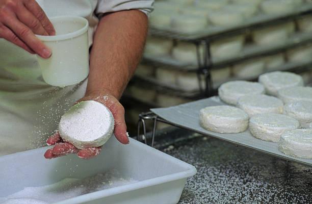 fromage de chèvre stock photo