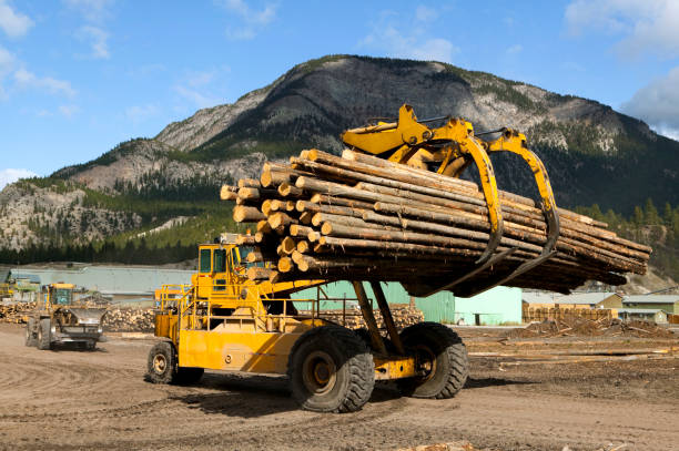 front end log loader - logging equipment stock photos and pictures