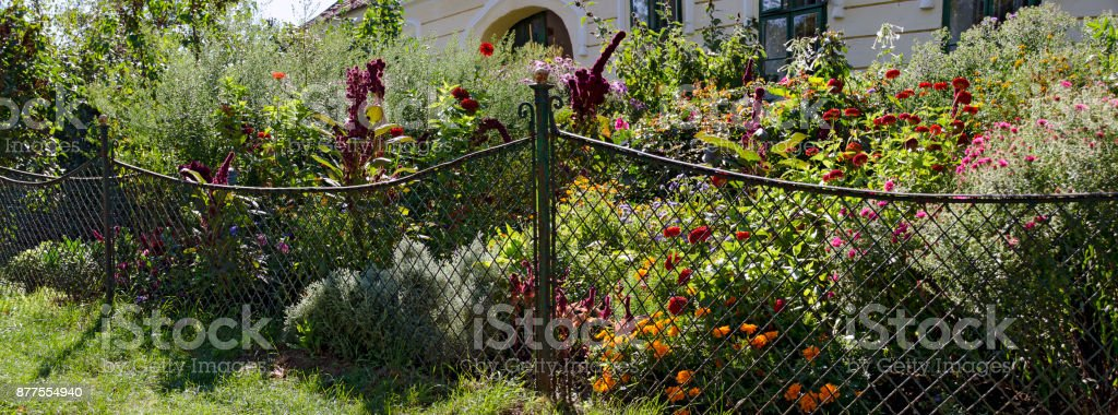 front garden with traditional wire fence stock photo