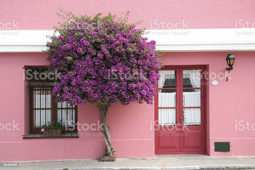 Front of pink house royalty-free stock photo