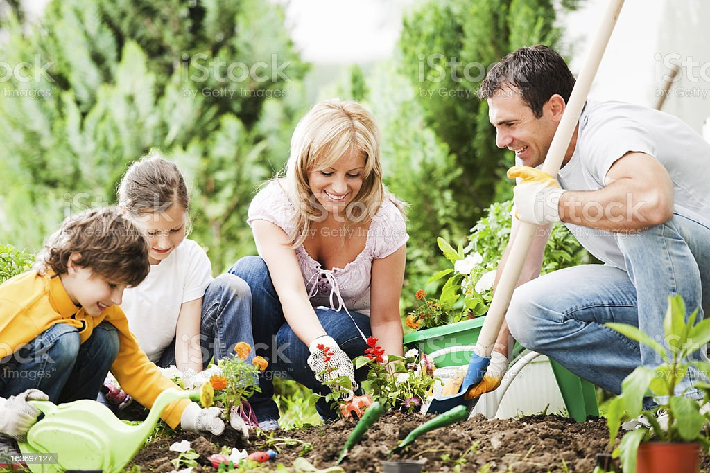 Front view of a family gardening together stock photo