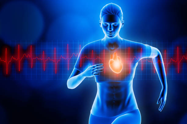 Front view of a sportswoman running with glowing heart and red heartbeat ekg curve. Blue hologram futuristic 3d rendering illustration. Sport, health, medical, science, anatomy, effort test concepts. stock photo