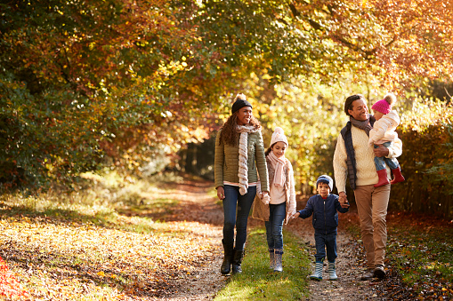istock Front View Of Family Enjoying Autumn Walk In Countryside 653069484