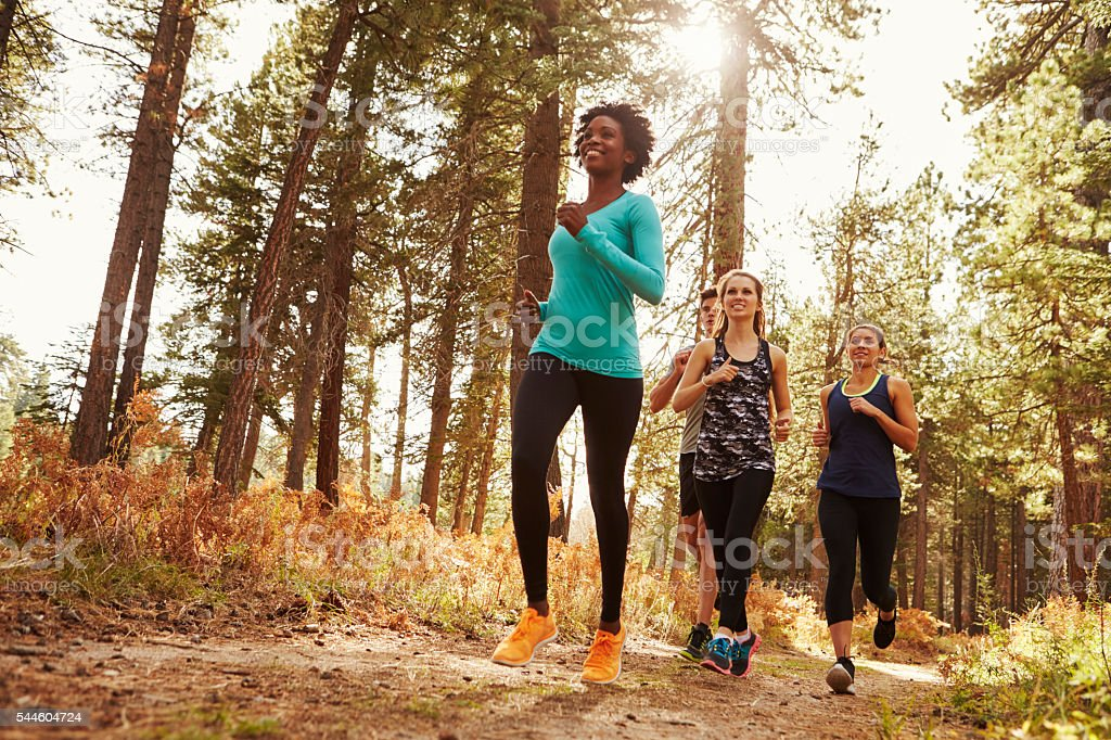 Front view of four adults running in a forest, low stock photo