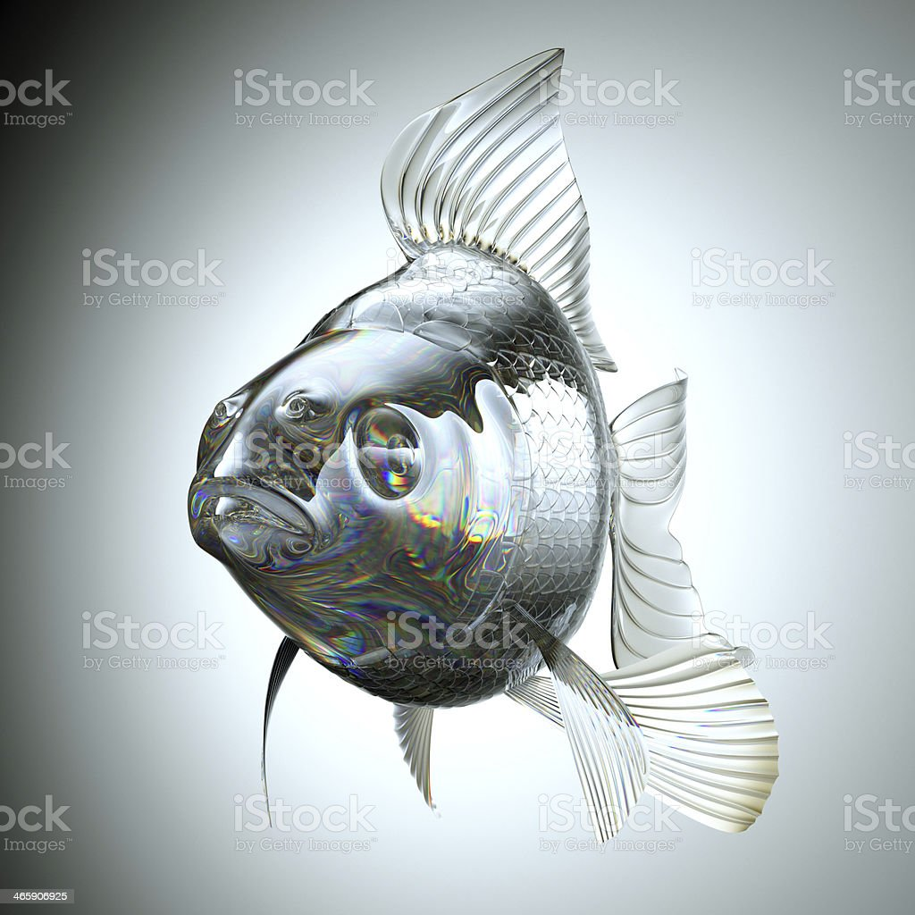 Front view of Glass goldfish royalty-free stock photo