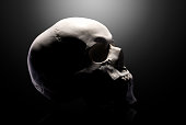 istock Front view of gypsum model of the human skull isolated on black background 1253823661