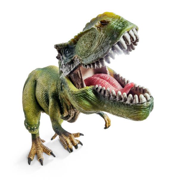 フロント ティラノサウルス ワイド ビュー、クリッピング パスと白い背景で隔離の恐竜グッズ。 - 恐竜 ストックフォトと画像