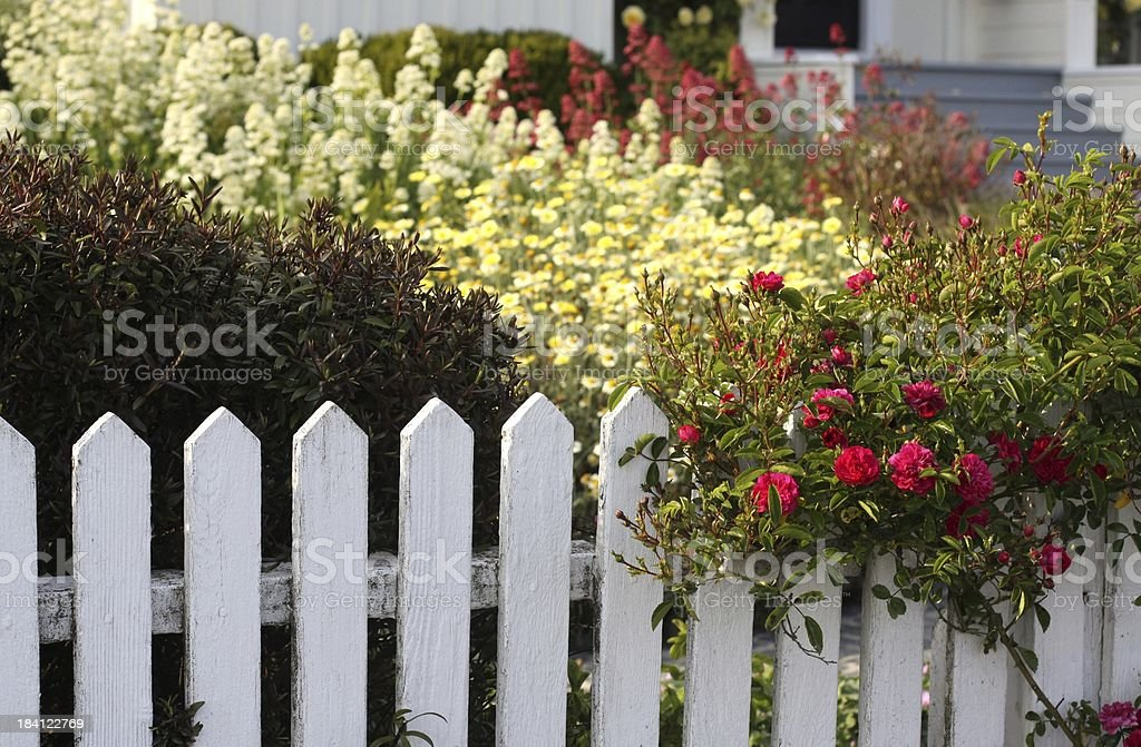 Front Yard Garden royalty-free stock photo