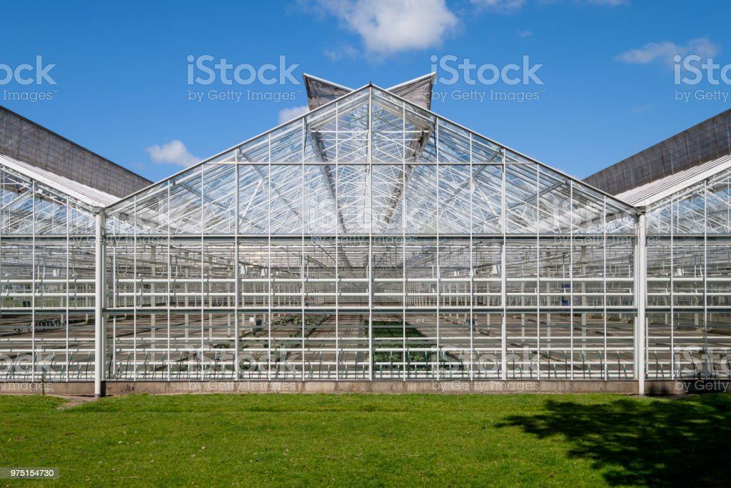 Frontal view of a greenhouse in the Netherlands. Have a look inside the greenhouse. stock photo