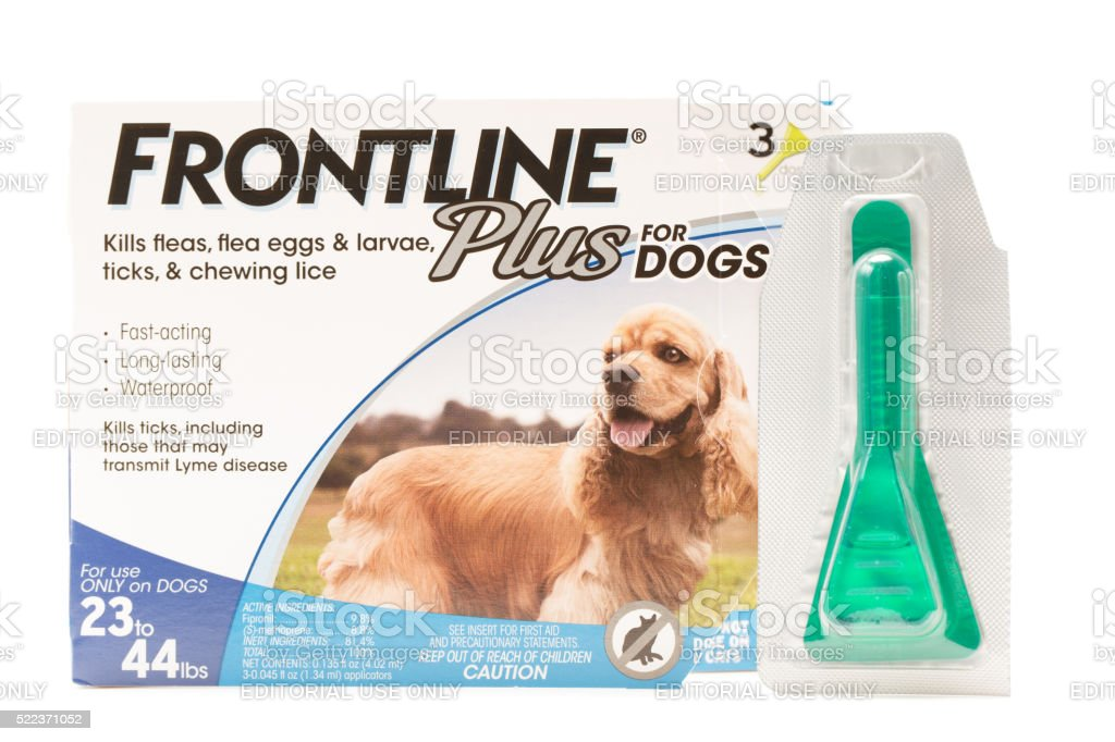 Frontline Plus for Dogs stock photo
