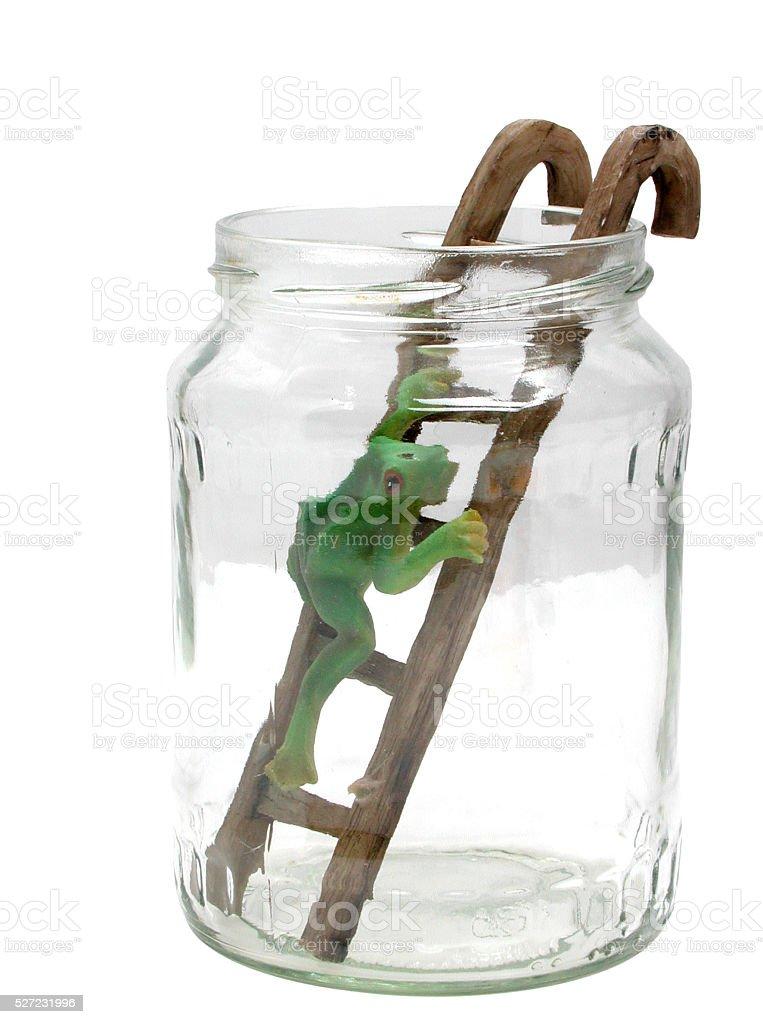 Frosch mit Leiter im Glas-Wetterfrosch - foto de acervo